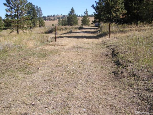 42 Lost Creek Wy, Tonasket, WA 98855 (#1201207) :: Ben Kinney Real Estate Team