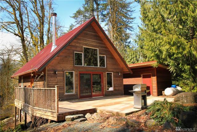11055 Mission Lane, Glacier, WA 98244 (#1201338) :: Ben Kinney Real Estate Team