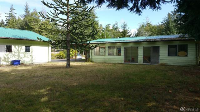 2702 235th Ln, Ocean Park, WA 98640 (#1201370) :: Ben Kinney Real Estate Team