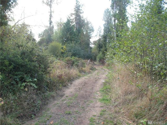 0 E Orchid Lane, Grapeview, WA 98584 (#1201679) :: Ben Kinney Real Estate Team