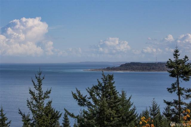 9999 Ocean Cove Lane, Joyce, WA 98383 (#1202436) :: Better Homes and Gardens Real Estate McKenzie Group