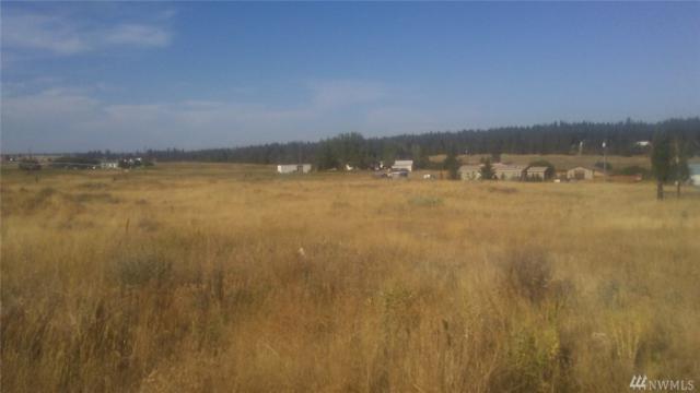 22922 W Mcfarlane Rd, Medical Lake, WA 99022 (#1202779) :: Homes on the Sound