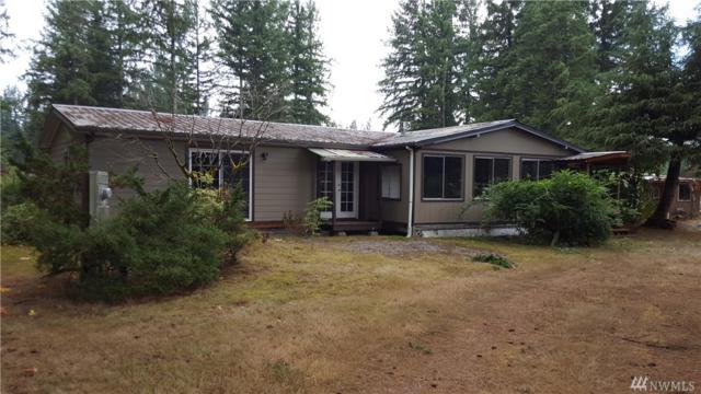 16911 Williams Lane SW, Rochester, WA 98579 (#1202832) :: Northwest Home Team Realty, LLC