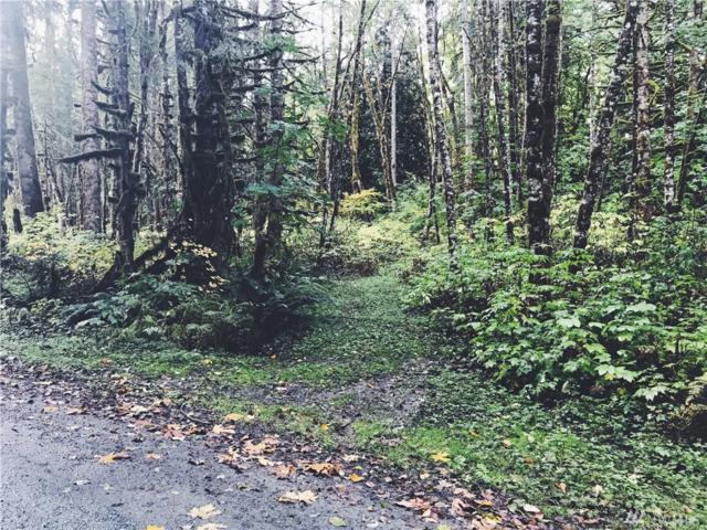 10007 Railroad Avenue, Glacier, WA 98244 (#1202963) :: Ben Kinney Real Estate Team