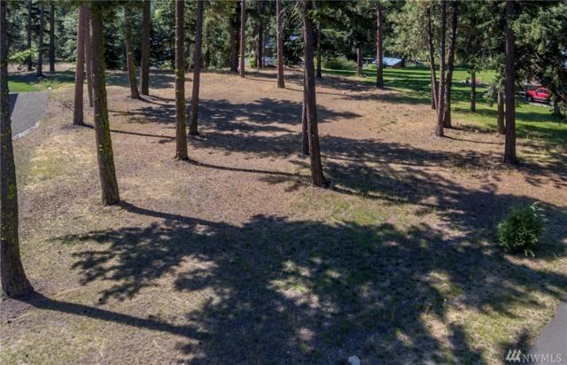 0-Lot 3C Wood Duck Rd, Cle Elum, WA 98922 (#1203049) :: Homes on the Sound