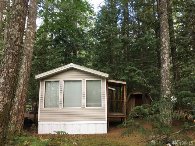 40-6 Riverside Dr, Deming, WA 98244 (#1203132) :: Ben Kinney Real Estate Team