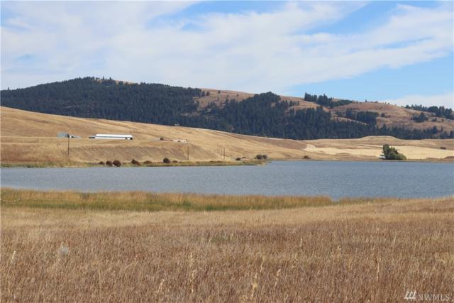 0 Sidley Lake Rd, Oroville, WA 98844 (MLS #1203293) :: Nick McLean Real Estate Group