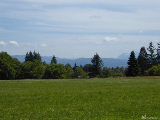 1-Lot 2 296th St NE, Stanwood, WA 98292 (#1204086) :: Homes on the Sound