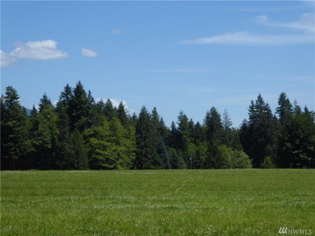1-Lot 3 296th St NE, Stanwood, WA 98292 (#1204101) :: Homes on the Sound