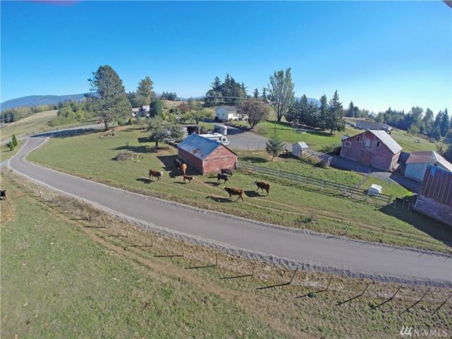 6553 Everson Goshen Rd, Everson, WA 98247 (#1204121) :: Ben Kinney Real Estate Team