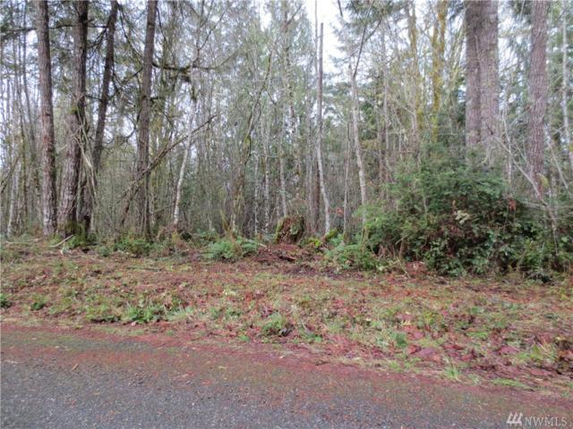 1-+ac Lost Lake Rd, Shelton, WA 98584 (#1204176) :: Homes on the Sound