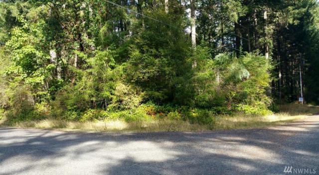 10521 Matthews Wy, Anderson Island, WA 98303 (#1204362) :: Ben Kinney Real Estate Team