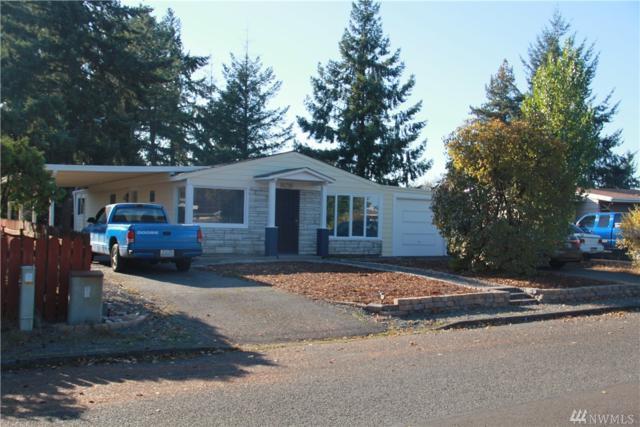 10210 Lila Lane SW, Lakewood, WA 98499 (#1204398) :: Ben Kinney Real Estate Team