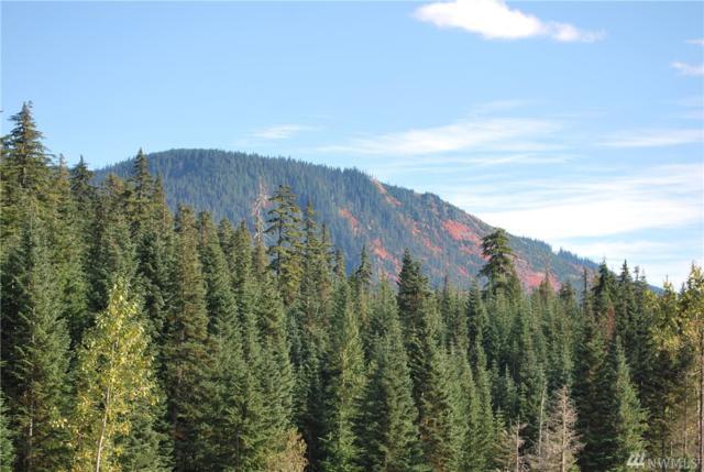 1-xxx Yellowstone Rd, Snoqualmie Pass, WA 98068 (#1204403) :: Ben Kinney Real Estate Team