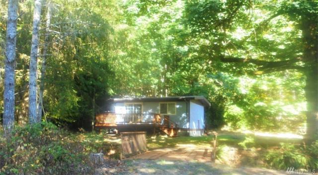 83 Palomino Lane, Brinnon, WA 98320 (#1204478) :: Ben Kinney Real Estate Team