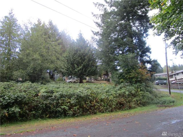 100 Evergreen Lane, Elma, WA 98541 (#1204641) :: Homes on the Sound