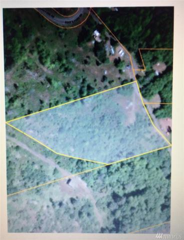 0 South Fork Lane, Raymond, WA 98577 (#1204673) :: Ben Kinney Real Estate Team