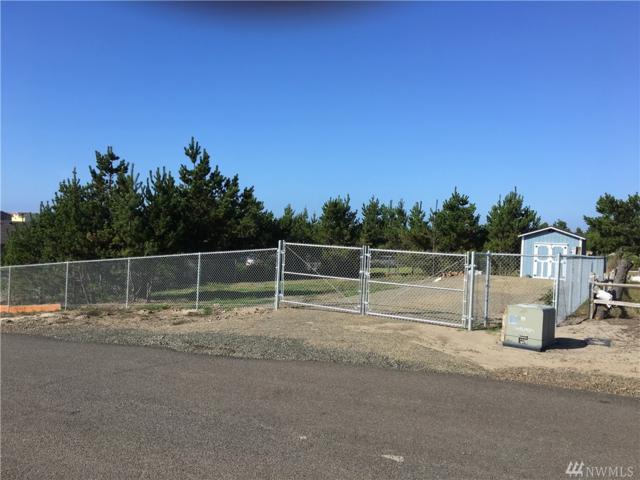 905 324th Place, Ocean Park, WA 98640 (#1204711) :: Ben Kinney Real Estate Team
