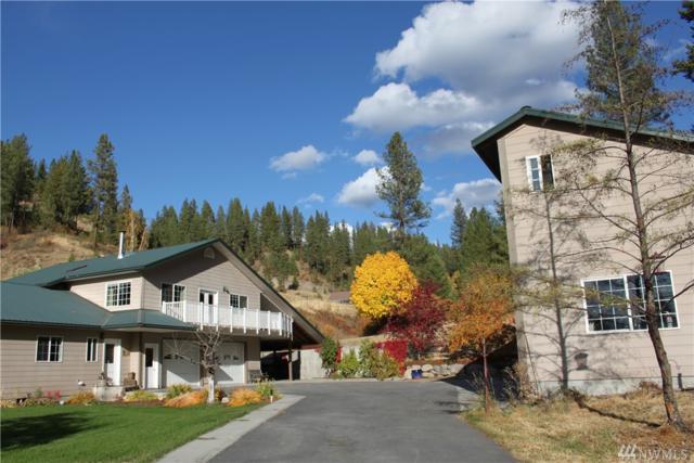 181 Aeneas Creek Rd, Malo, WA 99150 (#1204985) :: Ben Kinney Real Estate Team