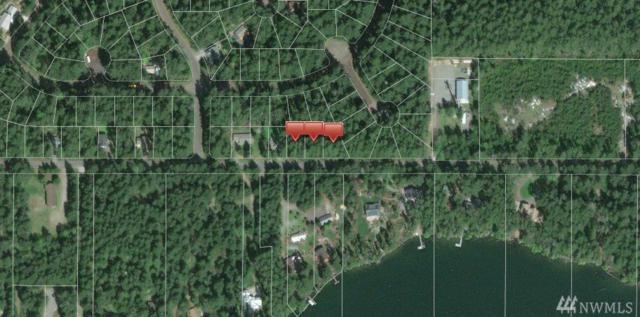 111-XX Guthrie Rd, Anderson Island, WA 98303 (#1205015) :: Ben Kinney Real Estate Team