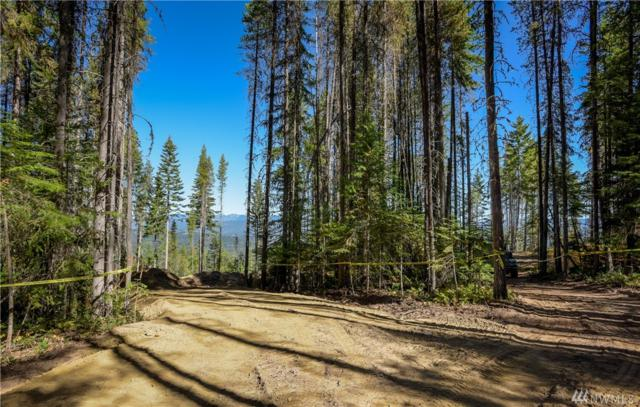 1091-(Lot 49) Trailside Dr, Cle Elum, WA 98922 (#1205105) :: Homes on the Sound