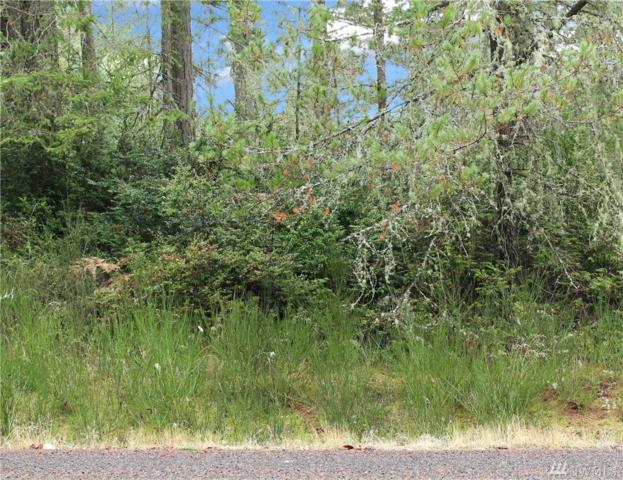 11521 Mill Place, Anderson Island, WA 98303 (#1205275) :: Ben Kinney Real Estate Team