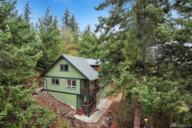 664 Overlook Lane, Burlington, WA 98233 (#1205410) :: Ben Kinney Real Estate Team