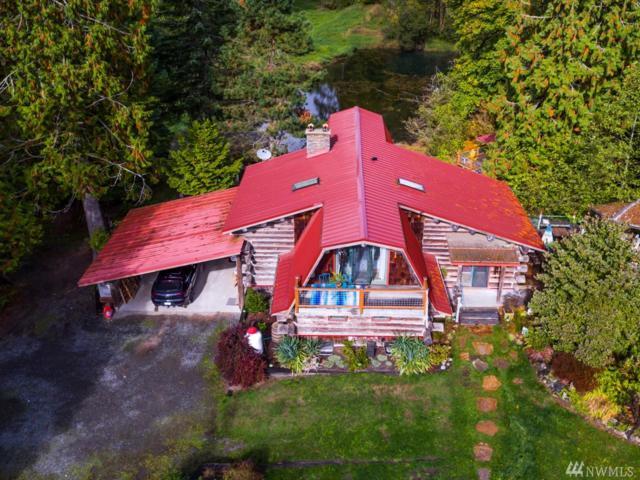 5925 Schornbush Rd, Deming, WA 98244 (#1205675) :: Ben Kinney Real Estate Team