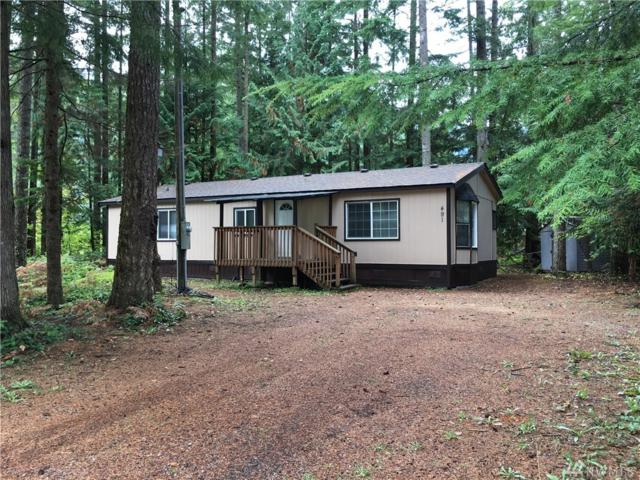 491 Flair Valley Dr, Maple Falls, WA 98266 (#1205688) :: Ben Kinney Real Estate Team