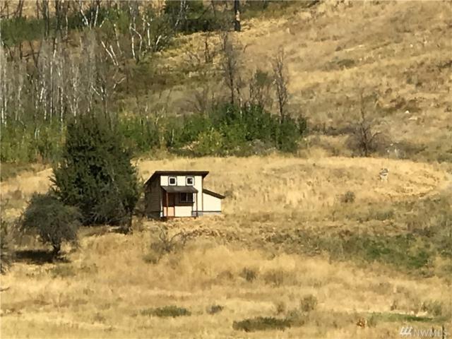 120-B Balky Hill Rd B, Twisp, WA 98856 (#1205780) :: Ben Kinney Real Estate Team