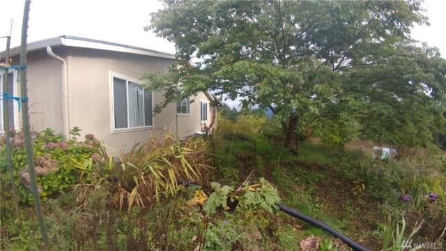 424 Maranatha, Kelso, WA 98626 (#1206085) :: Ben Kinney Real Estate Team