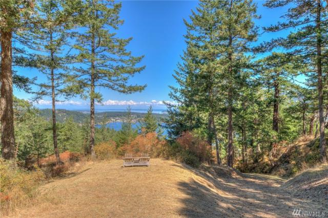 6 Village View Rd, Orcas Island, WA 98245 (#1206596) :: Ben Kinney Real Estate Team