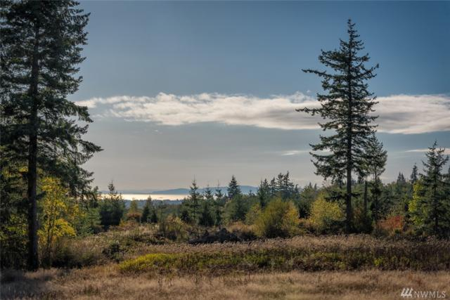 9526 Valley View Rd, Blaine, WA 98230 (#1206597) :: Ben Kinney Real Estate Team