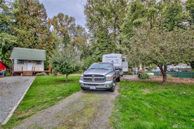 23651 Cove Rd, Sedro Woolley, WA 98284 (#1206724) :: Pettruzzelli Team