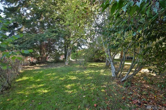 0 Park Ave., Langley, WA 98260 (#1206922) :: Ben Kinney Real Estate Team