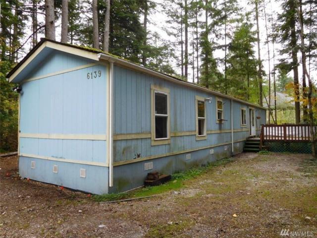 6139 Linden Ct, Maple Falls, WA 98266 (#1207023) :: Ben Kinney Real Estate Team
