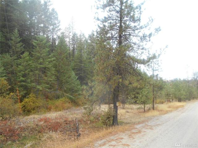 0 Indian Creek Rd, Davenport, WA 99122 (#1207025) :: Ben Kinney Real Estate Team