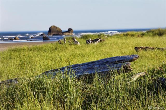 27 Copalis Rock Lane B, Copalis Beach, WA 98535 (#1207481) :: Homes on the Sound