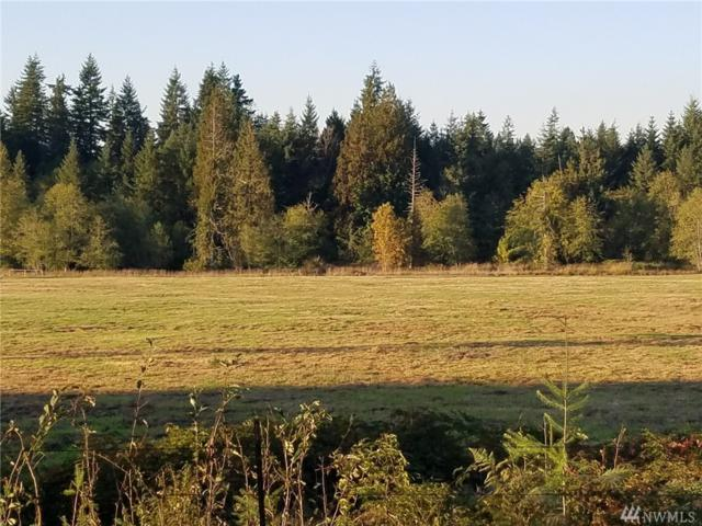 0-Lot A Middle Fork Rd, Onalaska, WA 98570 (#1207779) :: Ben Kinney Real Estate Team