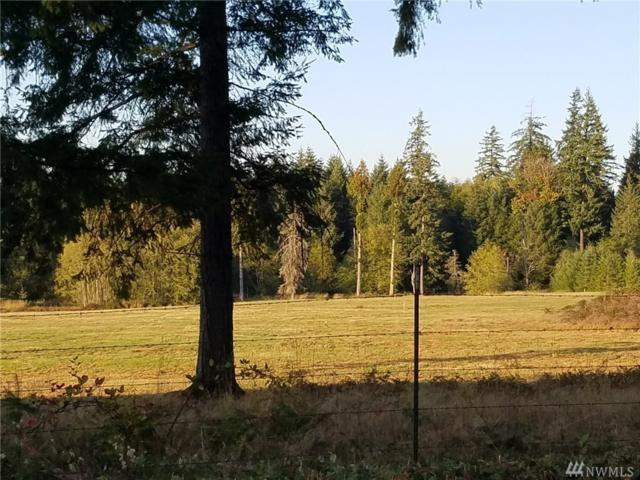 0-Lot C Middle Fork Rd, Onalaska, WA 98570 (#1207788) :: Ben Kinney Real Estate Team