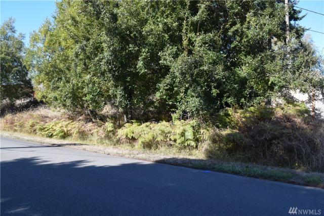 2 La Cana St, Coupeville, WA 98239 (#1207824) :: Ben Kinney Real Estate Team