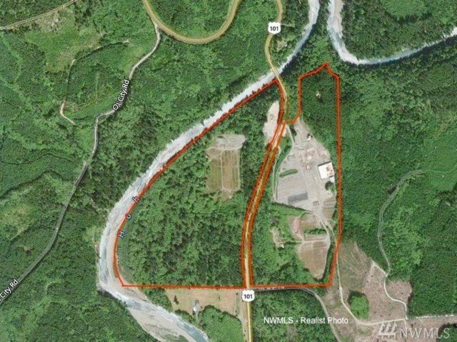 176412 Us Highway 101, Forks, WA 98331 (#1208049) :: The Kendra Todd Group at Keller Williams