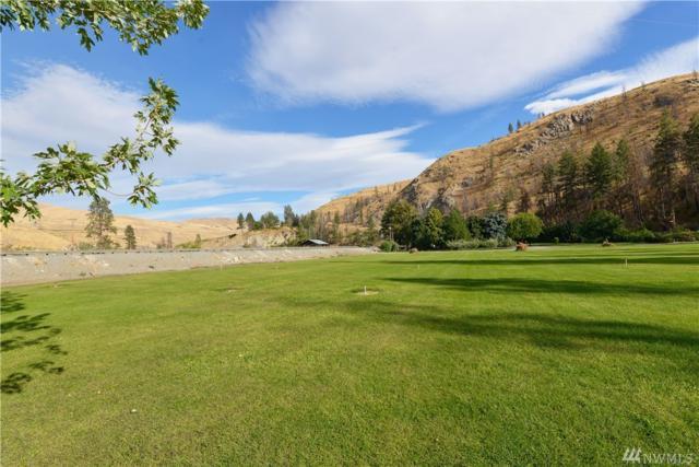 485 Highway 153, Pateros, WA 98846 (#1208091) :: Ben Kinney Real Estate Team