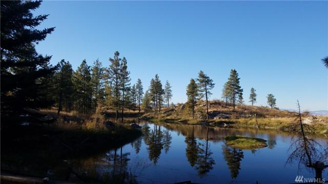 420 Cameron Lake Loop Rd, Okanogan, WA 98840 (#1208102) :: Homes on the Sound