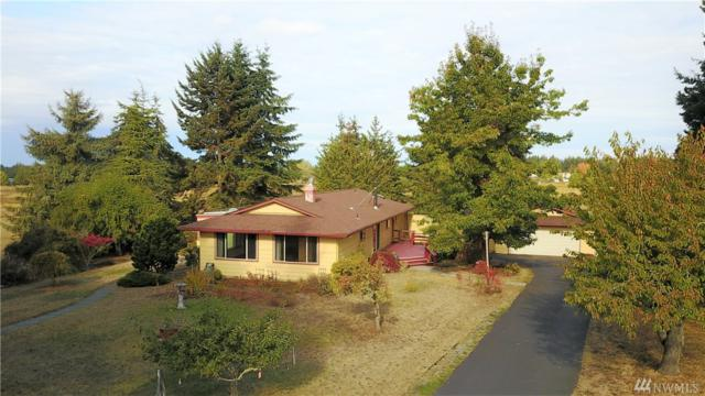 171 Bellway, Sequim, WA 98382 (#1208299) :: Ben Kinney Real Estate Team