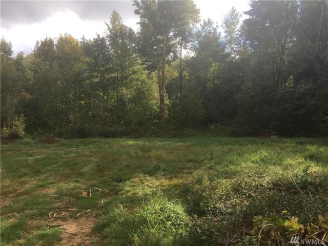 0 Velvet Lane, Custer, WA 98240 (#1208326) :: Ben Kinney Real Estate Team
