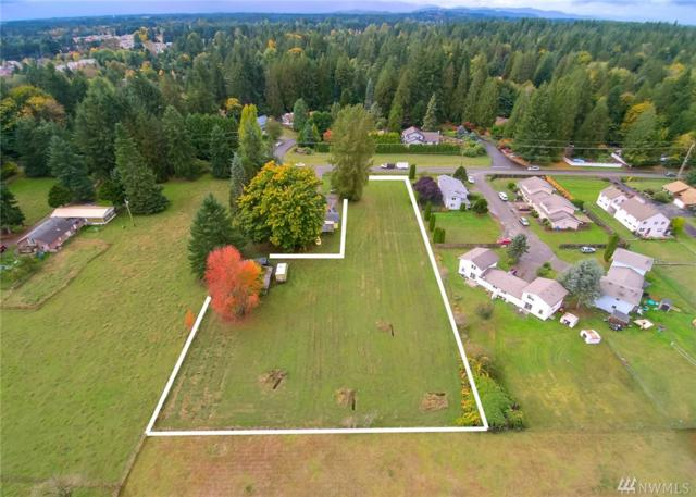 4620 Wiggins Rd SE, Olympia, WA 98501 (#1208748) :: Northwest Home Team Realty, LLC
