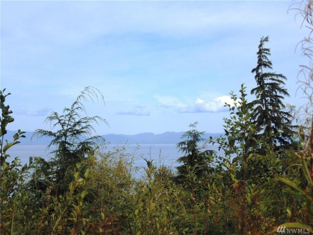 0 W Dew Knot Enter Rd, Port Angeles, WA 98363 (#1208754) :: Real Estate Solutions Group