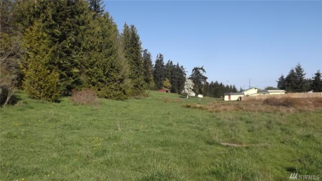 9999 Highway 101, Port Angeles, WA 98362 (#1208980) :: Better Homes and Gardens Real Estate McKenzie Group