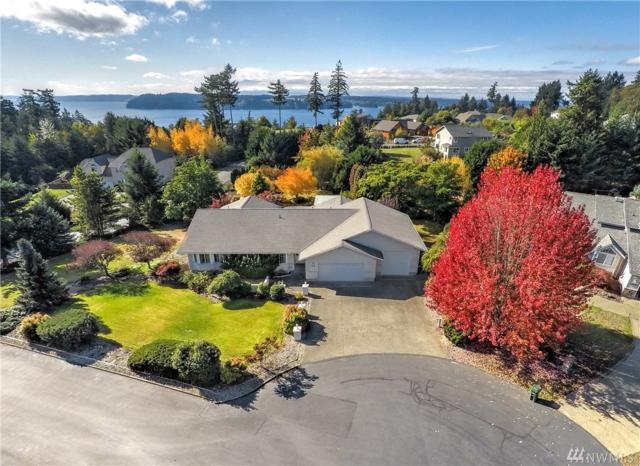 1085 Paha View Dr, Fox Island, WA 98333 (#1209086) :: Ben Kinney Real Estate Team